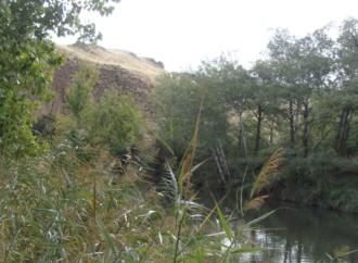 28 asociaciones se unen para defender el río Henares