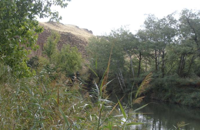 Acercar el río Henares a los vecinos: las propuestas y sugerencias del PP Alcalá