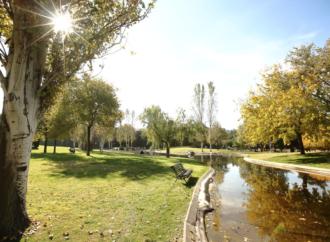 El atardecer de las luces, en el Cementerio Jardín de Alcalá