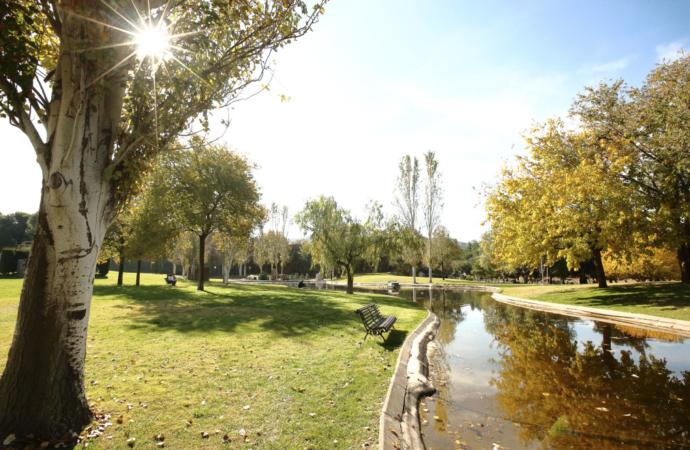 Plan Especial para los Cementerios de Alcalá ante el Covid-19 en el Día de Todos los Santos