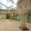 El Parador de Alcalá, engalanado para la Navidad: Árbol, Belén…