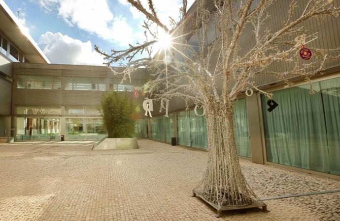 Ya es Navidad en el Parador de Alcalá de Henares: árbol, belén…