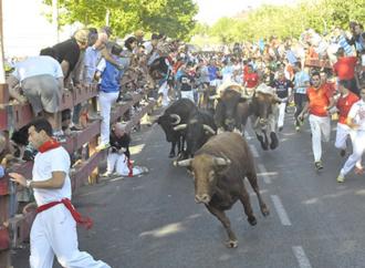 El PP de Alcalá exigirá un compromiso que evite la prohibición de los toros