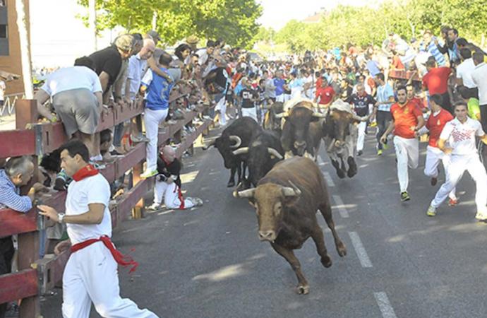 Las Fiestas de Alcalá se quedan finalmente sin encierros