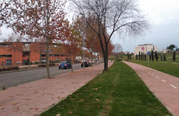 Alcalá creará el Bosque de El Quijote frente a la Plaza de Toros