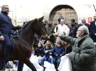 Alcalá celebra este domingo San Antón en la calle Mayor