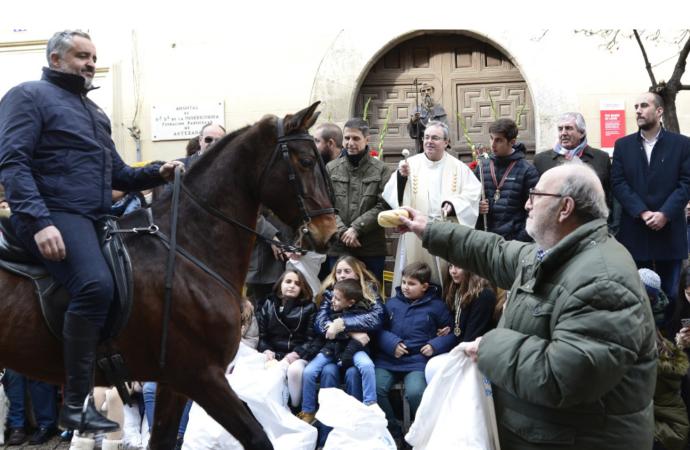 San Antón: el domingo 19, tradicional bendición de Animales en Alcalá