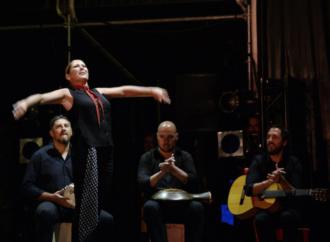 10 cosas que hacer en las Ferias de Alcalá de Henares