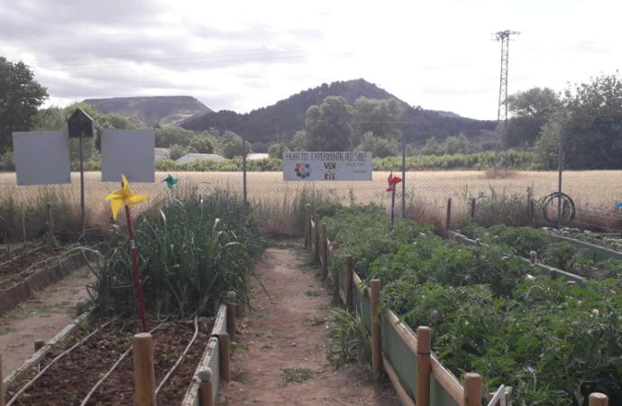 Día Mundial del Medio Ambiente: escolares del CEIP Cristóbal Colón visitan los huertos urbanos