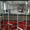 Las bibliotecas de la Universidad de Alcalá reabren sus puertas