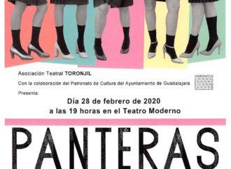 Este viernes se representa en el Teatro Moderno de Guadalajara la obra 'Panteras'
