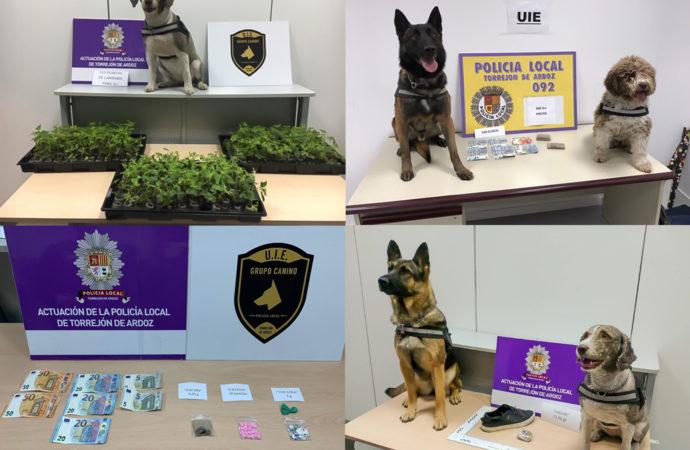 Cinco detenidos en Torrejón relacionados con drogas, gracias a la Unidad Canina de la Policía Local