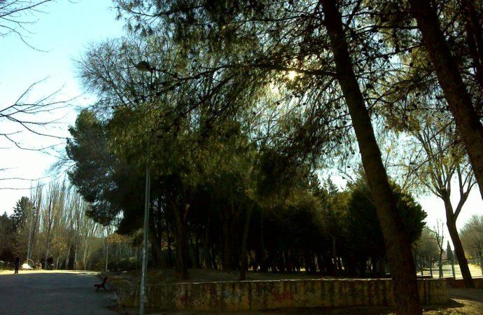 Cesión gratuita durante 75 años de una parte del parque del Coquín al nuevo campus de la Universidad de Alcalá