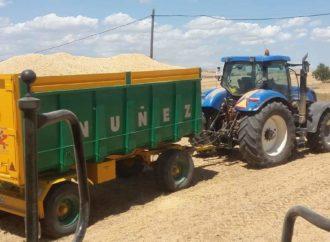 En Daganzo piden que no pisen los cultivos tras autorizarse los paseos a partir del 2 de mayo