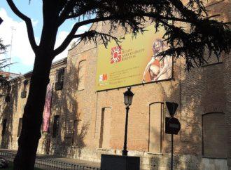 Visitas guiadas para ver la exposición en el Museo Arqueológico Regional