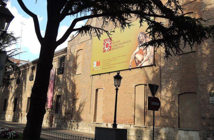 El Museo Arqueológico en Alcalá se convierte en La colina de los Tigres Dientes de Sable