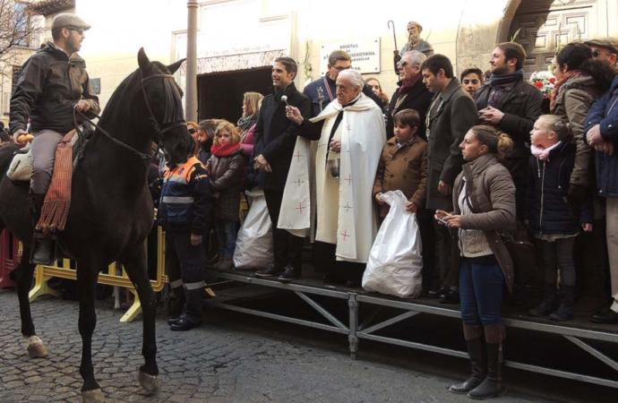 Perros, gatos, caballos… Alcalá de Henares celebra San Antón este domingo