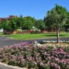 Torrejón de Ardoz abre desde hoy algunos parques y el cementerio municipal