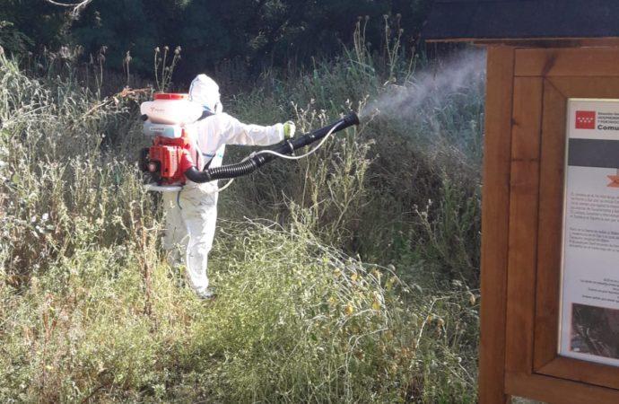 San Fernando de Henares intensifica los tratamientos contra larvas y mosquitos
