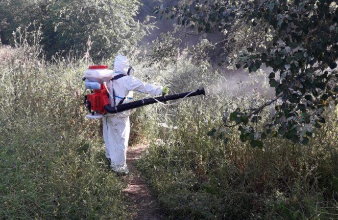 Sigue la campaña de eliminación de larvas y mosquitos en San Fernando