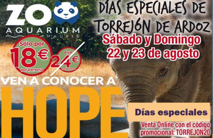 Este fin de semana finalizan los Días Especiales de Torrejón con grandes descuentos en el Zoo Aquarium