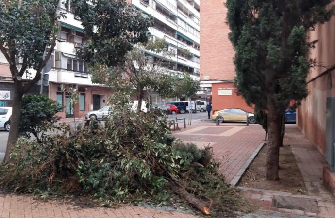 Alcalá cuantifica los daños sufridos por el temporal de nieve en 13 millones de euros