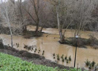 Guadalajara pide a sus ciudadanos que eviten acercarse al parque fluvial del Henares ante la crecida del río y la previsión de lluvias