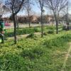 Arranca la campaña de limpieza de primavera en los parques y calles de Azuqueca