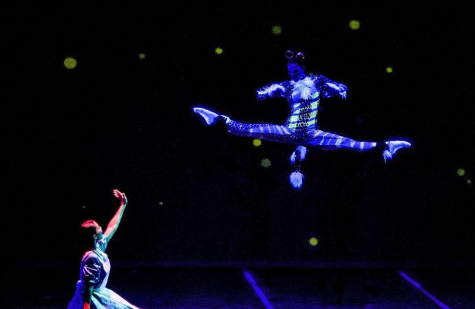 San Fernando acogerá el sábado 24 el espectáculo de danza 'Alicia en el País de las Maravillas'