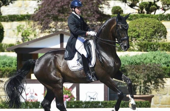Más de 110 caballos participarán este fin de semana en el Concurso Hípico Nacional 3* de Alcalá de Henares