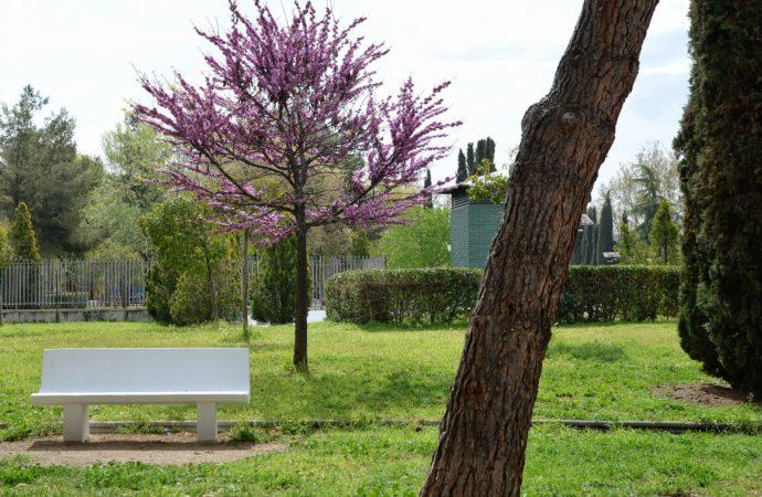 Mejoras y renovación de mobiliario urbano en la Isla del Colegio y el Parque Sementales de Alcalá