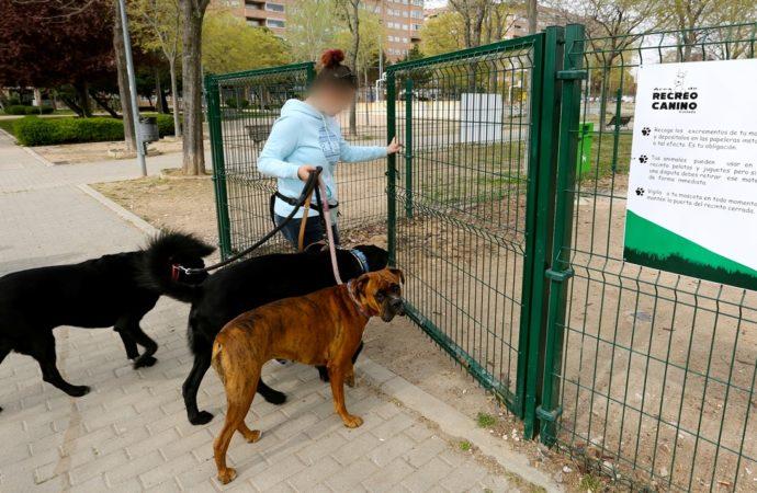 Coslada pone en marcha la campaña de control de animales domésticos 'Pisa tranquilo, cacas no'