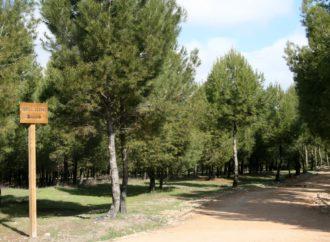 Coslada quiere que el Parque del humedal pertenezca al Arco Verde de la Comunidad