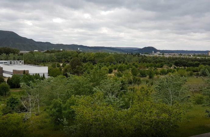 ¿Buscas aire libre? Visita el Jardín Botánico de Alcalá de Henares