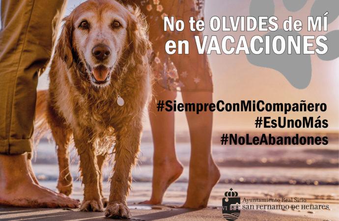 Campaña veraniega contra el abandono animal en San Fernando