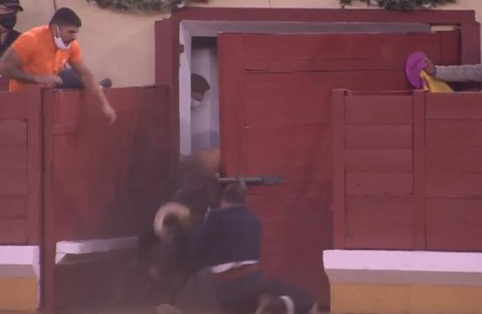 Un milagro a la puerta de toriles y varias puertas grandes: así fue la vuelta de los toros a Alcalá de Henares