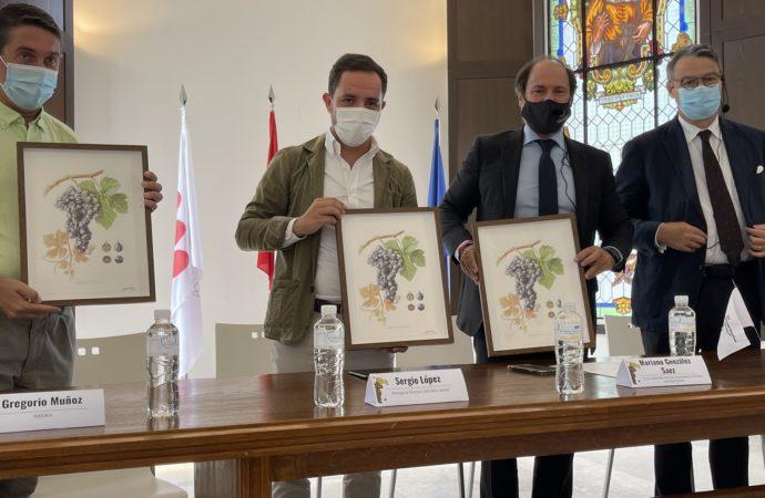 La Comunidad de Madrid reúne en Alcalá a expertos en viticultura de 11 países en el I «Curso Internacional de Ampelografía»